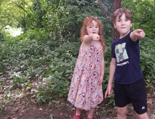 Ellesmere's Magical Plantation competition – winners announced